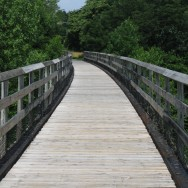 Train Trestle on the New River Trail
